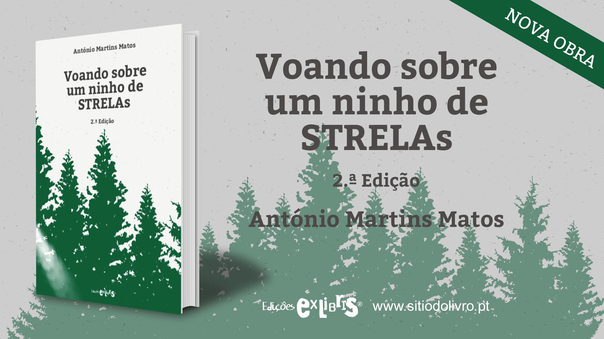 banner_FB_Voando_sobre_um_ninho_de_STRELAs